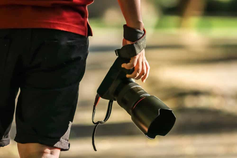 Crédito: borisoot wattanarat/Shutterstock.com