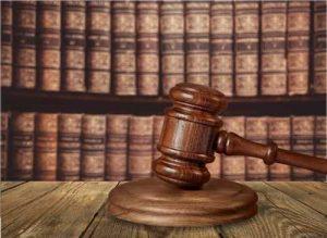Juíza federal condena 16 pessoas por venda ilegal de animais silvestres | Juristas