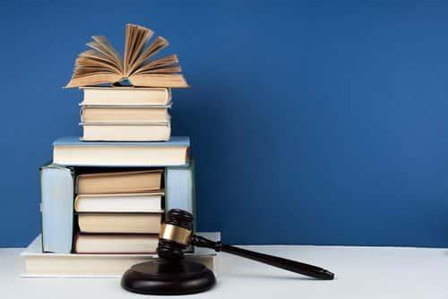 Por omissão e negligência, mãe perde a guarda dos filhos | Juristas