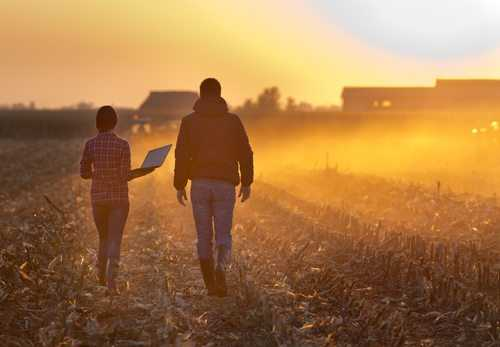 É doméstico, e não trabalhador rural, o empregado que presta serviços em propriedade rural que não explora atividade agroeconômica.