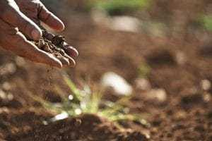 Visão monocular de agricultora não justifica aposentadoria por invalidez