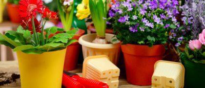 Floricultura deverá ressarcir prestadora de serviços