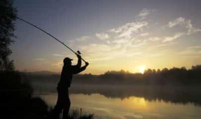 Ministro do STF rejeita aplicação do princípio da insignificância em condenação por pesca proibida