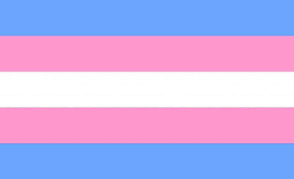 Juiz reconhece direito de transexual modificar seu gênero no registro sem cirurgia