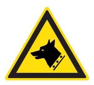 Dono de cachorro deve indenizar criança atacada por animal | Juristas