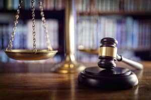 Selvagem Adventure é condenada a indenizar fotógrafo por contrafação | Juristas