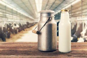 Veterinário acusado de fraudar leite
