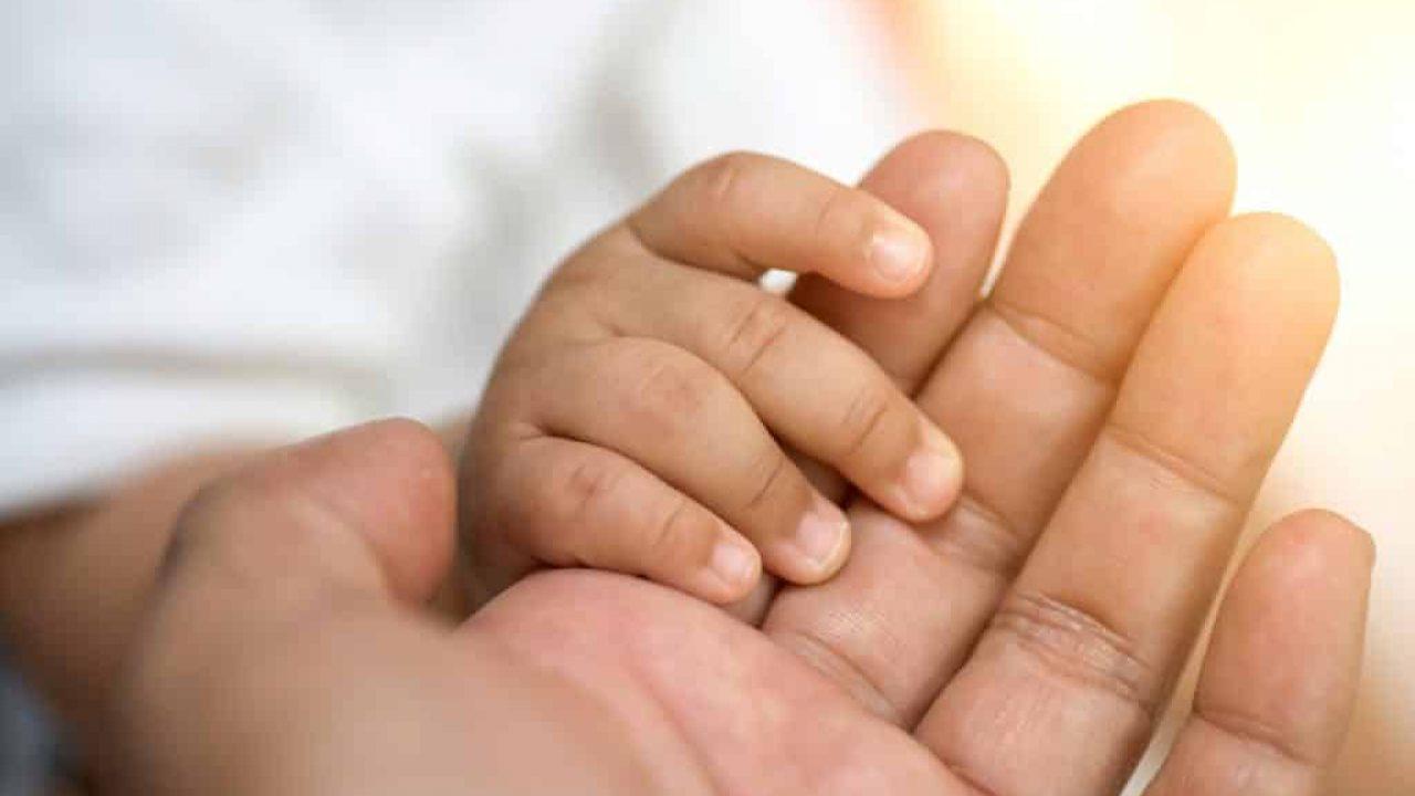 Petição Família Apresentação De Quesitos A Serem