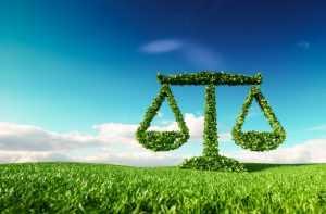 Flexibilizar normas e exigências ambientais é mesmo o melhor caminho? | Juristas