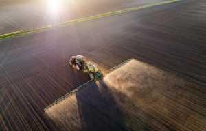 ministério da agricultura
