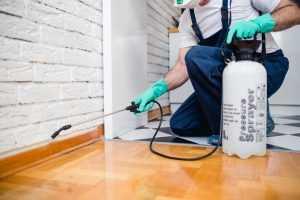 Autoridades sanitária e ambiental devem avalizar pulverização aérea de inseticida contra Aedes aegypti