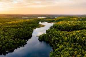 Bolsonaro e ministro do meio Ambiente devem prestar informações ao STF em ação sobre desmatamento | Juristas