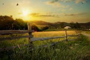 Concedida justiça gratuita a postulante de aposentadoria rural por idade | Juristas