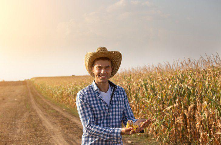 Fazenda - Administrador - Contrato