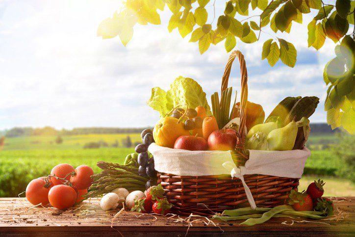 Extração Vegetal